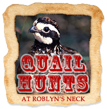 Roblyns Neck Hunting Club | Home